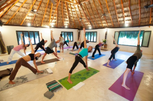 real estate for yogis