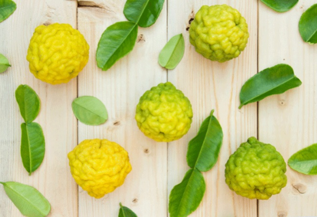 all about bergamot oil