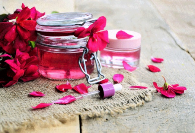 all about geranium oil