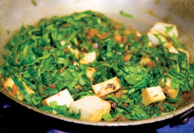 tofu & palungo palak