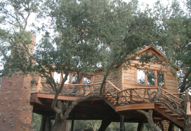 tree houses, at home among the leaves