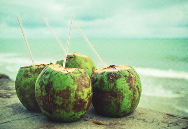 properties and benefits of coconut water