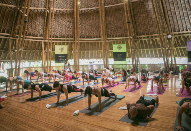what is yoga really worth?