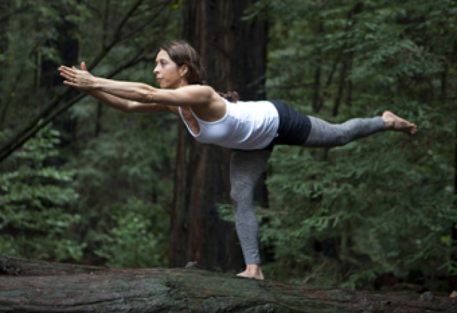 what is seasonal vinyasa