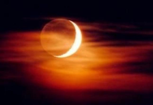 November 24 New Moon Asana