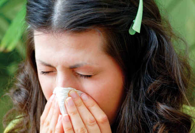 natural allergy symptom relief