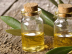 all about tea tree oil