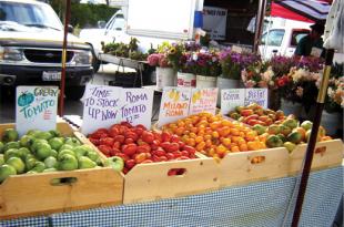 marin civic center  farmers' market