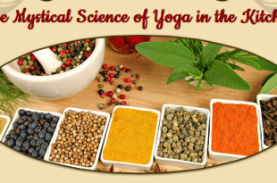 cooking the yoga sutras, an online course