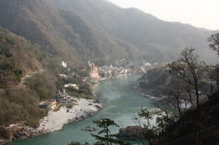 200 hour teacher training in rishikesh, india.