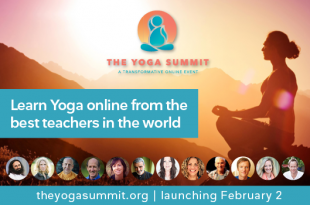 The Yoga Summit | February 2-22, 2017