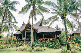 lotus shores siargao