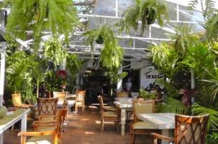 The Conscious Café