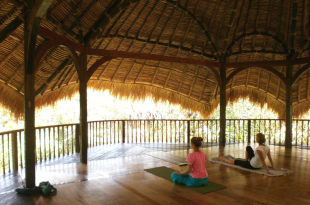 green school yoga studio