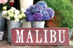 yoga and shopping in malibu