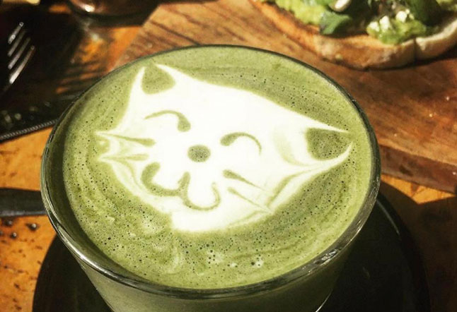 café vída