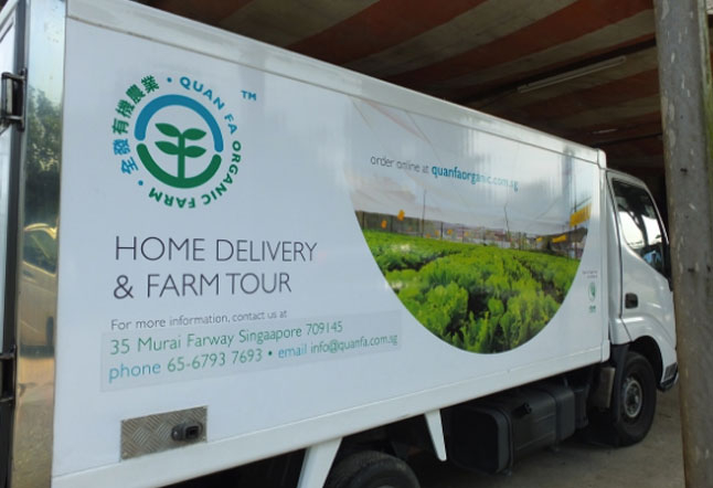 5 organic vegetable delivery services in singapore