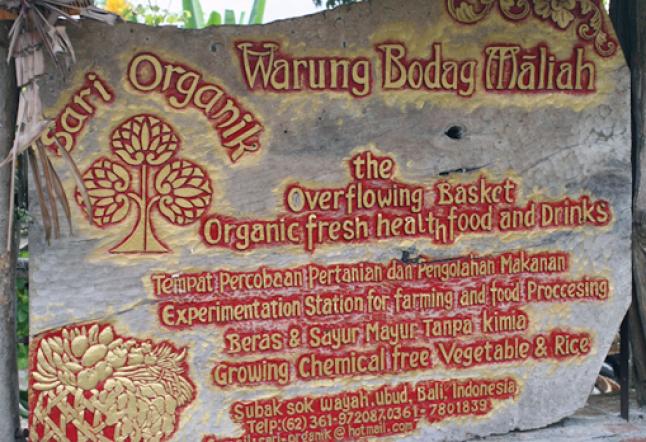 sari organik
