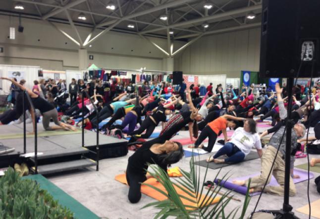 toronto yoga show 2014