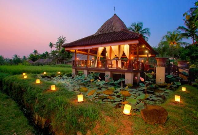 wapa di ume - ubud resort and spa