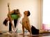 ashtanga yoga la